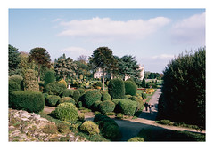 FILM - Brodsworth Hall gardens (fishyfish_arcade) Tags: agfactprecisa analogphotography filmphotography filmisnotdead istillshootfilm nikkor2880f3556afd nikonf70 slidefilm analogcamera film brodsworthhall