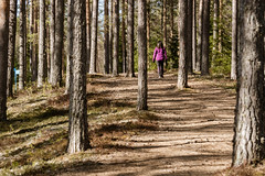 Vedenjakaja 1 (VisitLakeland) Tags: eteläsavo finland lakeland pieksämäki southsavo kevät luonto maisema nature outdoor retkeilyreitti scenery vedenjakaja