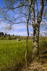 Lindhorst_Umland-13499 (extrapeter) Tags: bergen niedersachsen deutschland