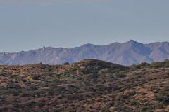 042020193492 (Lake Worth) Tags: landscape landscapes nature
