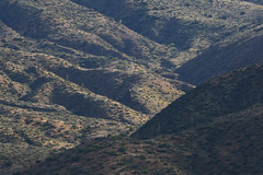 042020193490 (Lake Worth) Tags: landscape landscapes nature