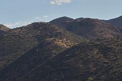 042020193488 (Lake Worth) Tags: landscape landscapes nature