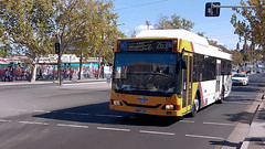 Adelaide Bus (3/4) (Jungle Jack Movements (ferroequinologist)) Tags: king william street north terrace custom coaches obahn jetty road glenelg adelaide metro sa south australia bus transport service carry take journey convey move travel passenger route stop ring bell card city suburb trip conveyance carriage vehicle depot driver trek seat ticket go hail mobile pass coach drive number tour voyage tourism work cover livery commute commuter customer traveller fare toll bas persiaran town mind gap man iveco higer cummins