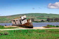 The Point Reyes - Wrecked in Inverness (Jill Clardy) Tags: california northamerica pointreyes usa beach ocean sea spring 201904169l8a3127 inverness unitedstatesofamerica wrecked boat fishing wood wooden ship shipwreck ruined abandoned tomales bay