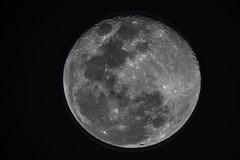 Plenilunio de primavera (José M. Arboleda) Tags: luna llena plenilunio primavera astro satélite astronomía noche cielo popayán colombia canon eos 5d markiv tamron sp150600mmf563divcusda011 14xtelepluspro300 josémarboledac