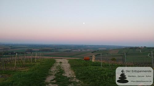 Monduntergang über dem Selztal