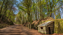 Cromford Incline. (Ian Emerson (Thanks for all the comments and faves) Tags: cromford incline railway hut derbyshire outdoor trees walking bankholiday easter sunny colours canon6d history highpeakjunction