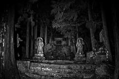 Futago-ji 両子寺 (小川 Ogawasan) Tags: japan japon oita kunisaki futagoji 両子寺 night