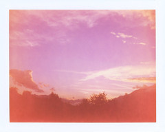 Summer Skies 2017 3 (sycamoretrees) Tags: 690 690200409 analog automatic100 clouds expired expired2004 film instantfilm landcamera marianrainerharbach model100 packfilm polaroid sky sunset type100