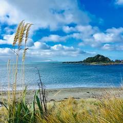 Island Bay Beach (Square Crop) (ecophotographer) Tags: path wood boardwalk island sea turquoise clouds beach blue sand toitoi