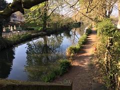 Basingstoke Canal @Ash (Kris Davies (megara_rp)) Tags: basingstoke canal waterway ash surrey