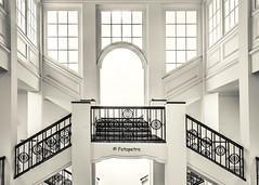 Treppenhaus Handwerkskammer Hamburg (petra.foto busy busy busy) Tags: treppenhaus handwerkskammer hamburg kontorhaus germany stairs architektur monocrom symmetrie schwarzweis fotopetra 5dmarkiii