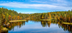 River Kitkajoki (M.T.L Photography) Tags: riverkitkajoki juuma kuusamo autumn water trees forest grass green isle rocks panoramicphotography boat cabin mikkoleinonencom clouds sauna
