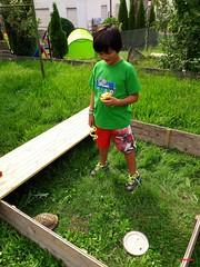 feeding the tortoise (mknt367 (Panda)) Tags: outside tortoise gonzalez garden feeding boy
