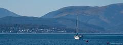 Yacht on Peninsula (Rourkeor) Tags: cowalpeninsula firthofclyde gourock inverclyde mzuikodigitaled12‑100mm140ispro m43 omdem1markii olympus scotland uk boat hills mft microfourthirds yacht unitedkingdom