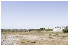 Apeadeiro de Castro Marim (Campo de fútbol) (epha) Tags: algarve portugal castromarim estação football station railway horses