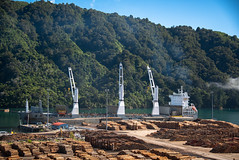 All For Export (Jocey K) Tags: marlboroughsounds newzealand southisland marlborough ship logs trees scene cloud steam sky sea water