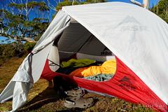 20190419-43-Tents on Gould Plateau (Roger T Wong) Tags: 2019 australia cradlemountainlakestclairnationalpark glouldplateau lakestclair msrhubbanx macpacmicrolite np nationalpark rogertwong sel24105g sony24105 sonya7iii sonyalpha7iii sonyfe24105mmf4goss sonyilce7m3 tasmania bushwalk hike outdoors tent tents tramp trek walk
