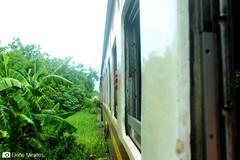 Thai_020 (Ekiñe Miralles Mugica) Tags: tailandia thailand thai train travel transport tren viajar transporte speed velocidad