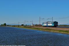ALn663 1183 (Mattia Deambrogio - Trains & Cars Photos) Tags: aln663 automotrice leggera nafta risaia allagata vespolate novara