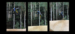 Stages (Magryciak) Tags: crankworx rotorua 2019 northisland canon eos slopestyle jump competition sport mountainbike cycling bicycle mtb mountain extreme rider forest trees dirtjump race fall mistake pressure