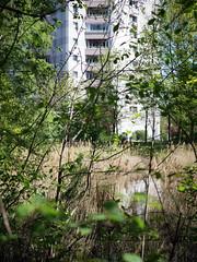 Das Hochhaus. / 21.04.2019 (ben.kaden) Tags: berlin hohenschönhausen neuhohenschönhausen bornerstrase bartherpfuhl architekturderddr städtebauderddr parkambartherpfuhl plattenbau stadtnatur 2019 21042019