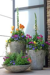 35 Front Door Flower Pots For A Good First Impression (Read News) Tags: 35 front door flower pots for a good first impression