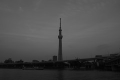 PS1R3915 (Zengame) Tags: asakusa dcs1r lmount lmonochromed lumixs lumixs24105mm lumixs24105mmf4 lumixs24105mmf4macroois lumixs1r lumix lマウント lモノクロームd panasonic sr24105 s1r sumidariver sumidagawa architecture bw japan landmark monochrome river sky skytree tokyo tokyoskytree tower スカイツリー パナソニック モノクロ モノクローム ルミックス 日本 東京 東京スカイツリー 浅草 空 隅田川 tokyoprefecture