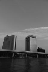 PS1R3883 (Zengame) Tags: asakusa dcs1r lmount lmonochromed lumixs lumixs24105mm lumixs24105mmf4 lumixs24105mmf4macroois lumixs1r lumix lマウント lモノクロームd panasonic sr24105 s1r sumidariver sumidagawa architecture bw japan landmark monochrome river sky skytree tokyo tokyoskytree tower スカイツリー パナソニック モノクロ モノクローム ルミックス 日本 東京 東京スカイツリー 浅草 空 隅田川 tokyoprefecture