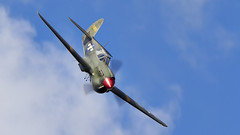 P-40  Tomahawk (Bernie Condon) Tags: p40 tomahawk warhawk kittyhawk fighter bomber military warplane usaaf ww2 vintage preserved classic aircraft plane flying aviation