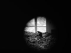RONE - EMPIRE (adhox) Tags: lonelychair burnhambeeches roneempire rone
