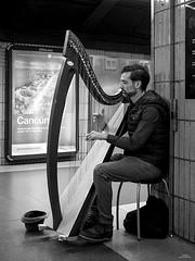 Músico callejero (vitometodio) Tags: arpa harp musica music musician musico metro blancoynegro blackandwhite bcn streetphotography streetphoto street fotografiaurbana olympus urbanphotography blackandwhitephotography monocromatic vitometodio olympusomdem5markii olympusmzuikodigitaled1240mmf28