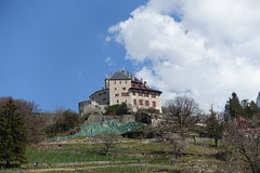 Castle @ Menthon-Saint-Bermard @ Hike to Château de Menthon-Saint-Bernard, Rochers des Moillats & Ermitage de Saint-Germain (*_*) Tags: april afternoon spring printemps 2019 sunny europe france hautesavoie 74 annecy savoie hiking walk marche randonnee nature mountain montagne menthonsaintbernard castle chateau chateaudementhon