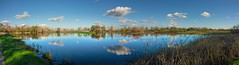 Wetlands HDR (randyherring) Tags: ca california centralcaliforniavalley cosumnesriverpreserve elkgrove afternoon aquaticbird nature outdoor recreational waterfowl wetlands