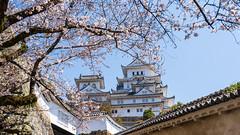 Himeji Castle (Neo 's snapshots of life) Tags: 日本 japan 姬路城 himeji ひめじじょう sony a73 a7m3 24105 關西 兵庫縣 himejicastle