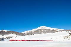 Celerina, Oberengadin, Graubünden, Schweiz (graubuenden.bilder) Tags: celerina rhb rhätischebahn winter süsskind albulagliederzug alvra graubünden schweiz