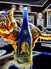 2019 104/365 4/14/2019 SUNDAY - Miss Puss and the Game of Thrones For The Throne Strong Golden Ale With Pinot Grigio And Viognier Grape Juice - Brewery Ommegang (_BuBBy_) Tags: miss feline cat puss drink beer 14th april 14 4 4142019 ommegang brewery juice grape viognier and grigio pinot with ale golden strong throne for thrones game sunday days 365days 365 2019 104 104365