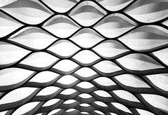 Waves (Karen_Chappell) Tags: abstract bw blackandwhite architecture pavilion travel usa chicago illinois lincolnpark wood wooden structure canopy curves shapes pattern fisheye canonef815mmf4lfisheyeusm wideangle geometry geometric