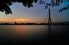 Rama VIII Bridge, Bangkok (Tom Helleboe) Tags: laowa 15mm f2 thailand bangkok easter bridge