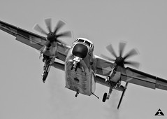 Fish on Final (uaz28ss01) Tags: navy c2 greyhound elcentro california approach final gear cod prop transport delivery low aviation military carrier canon airplane aircraft black white