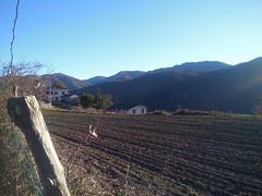 (diletta111) Tags: zeri monti mountains winter inverno
