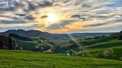 Evening Light (Anselm11) Tags: wander baselland benken schweiz switzerland landscape sunset