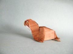 Walrus - Jeong Jae Il (Rui.Roda) Tags: origami papiroflexia papierfalten morsa walrus jeong jae il