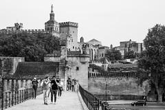 Avignon (daniel bron) Tags: nikond750 sigma247028 avignon francia puente