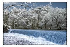 Grand Falls - Infrared (Terry L. Olsen) Tags: infrared water waterfall spring fujifilmxt1 afnikkor50mmf18 movingwater lightroomclassiccc joplin missouri grandfalls