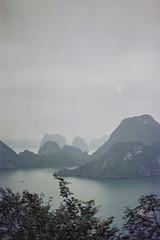 Best_Vietnam_HaLong Bay0319-13 (mizzbritta) Tags: halongbay vietnam 2019 filmphotography film 35mm asia