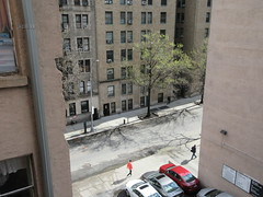 Tiny Green Spring Leaves on Tree 45th St NYC 6074 (Brechtbug) Tags: tiny green spring leaves tree 45th street between 8th 9th avenues looking out front window nyc 04152019 small shadow weather car parking lot hell s kitchen clinton new york city midtown manhattan 2019 leaf growing sunlight