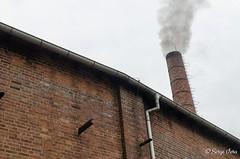 _SVG7142 (giver40 - Sergi) Tags: dresden dampflok steamlocomotive locomotora de vaporrotonda vapor steam dampfloktreffen sajonia drehscheibe smoke chimneychimenea
