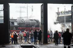 BR 01 202 (giver40 - Sergi) Tags: dresden dampflok steamlocomotive locomotora de vaporrotonda vapor steam dampfloktreffen sajonia drehscheibe