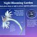 PHX Desert Botanical Garden IMG_2182